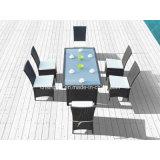 Rattan-Möbel für im Freien/das Speisen des Sets mit SGS Cetificated (1024)