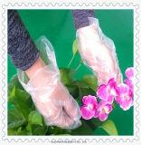 Fabrik-neues Produkt transparente geprägte PET Wegwerfhandschuhe