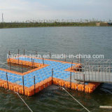 Criadero de peces flotante construida por el HDPE Pontoon Dock