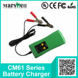 다른 Current 6V/12V Output Maintain Battery Charger