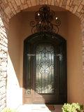 極度の品質のカスタム単一の鉄のドアの現代Windowsデザイン
