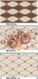 La pared caliente de la cerámica de la inyección de tinta de la venta 2017 embaldosa 250X400m m