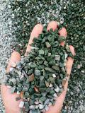 Mini bleus de mer déchirent la pierre pour la décoration de route de jardin