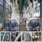 構築デザインムギの製粉機械100t鋼鉄Sturctureムギの製粉機械200tムギの製粉機