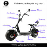 2017-2018 큰 인기 상품 모형 전기 단속기 전기 자전거 스쿠터 1000W