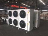 Refrigerador evaporativo do ar de /DJ-300 da baixa temperatura da alta qualidade para o quarto frio/armazenamento