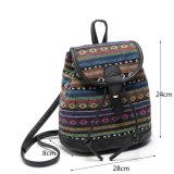 Соотечественника Schoolbag девушок пакета женщин Backpack повелительниц пакет причинного ежедневный (WDL0972)