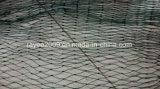 白い釣り道具のPEのKnotless漁網