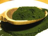 Производство питания органических Spirulina порошок