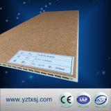 Comitato di parete di plastica di legno composito esterno di vendita calda