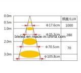 Mini-LED Deckenleuchte der Qualitätsfür Schmucksache-Systeme Downlight