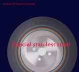 높은 양 Products300X2.5X32mm HSS는 절단기 스테인리스에 톱날을