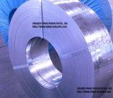 Bandes galvanisées d'acier pour le tube en acier, profils en acier (GI-004)