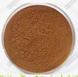 Polvere di erbe della quercetina dell'estratto di elevata purezza 95% del rifornimento della fabbrica