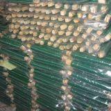 緑色の塗られた金属線か花屋ワイヤー