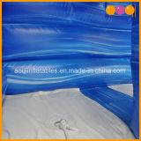 Trasparenza gonfiabile del raggruppamento del delfino del giocattolo dell'acqua per l'adulto ed i capretti (AQ10132)