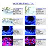 SMD3528 het veranderende LEIDENE van de Kleur Flexibele LEIDENE van Stroken Licht van de Strook