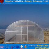 Wasserkultursystems-Glasgewächshaus für Tomate