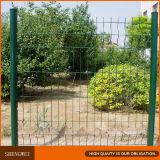 PVC에 의하여 입히는 용접 금속 정원 철망사 담 위원회