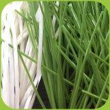 Высокое качество травы для использования футбола