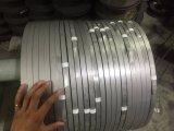 Tira en frío del acero inoxidable de la precisión 304 316L