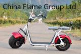 1500W 60V/30ah F/Rの中断2シートが付いている電気蹴りのスクーター