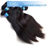 L'afro Kinky Human Cheveux raides