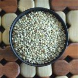 새로운 음식 녹색 파트너의 Quinoa
