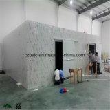Kühlraum mit PU-Zwischenlage-Panel für Tiefkühlkost