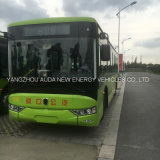 高性能電気バス乗用車10メートルの