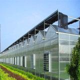 Abgas-Ventilations-Ventilatormotor für grünes Haus 220V 380V 460V