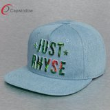 3D Embroidery Sulimation Printing Logo (65050099)를 가진 대중적인 5 Panel Design Snapback Hat