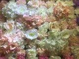 L'alta qualità fiorisce la decorazione falsa di seta del contesto della parete dei fiori artificiali
