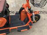 Motociclo eléctrico de triciclo para 2 adultos
