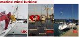 Laminatoio di vento orizzontale del generatore di turbina del vento di asse 100W 12V/24V