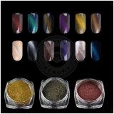 Pigmento magnetico multicolore di effetto dello specchio del Chameleon della decorazione della polvere del TUFFO di arte del chiodo dell'occhio di gatto 3D