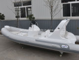 Liya 6.2m 10 Persons Hypalon Rigid Inflatable Boats Leisure Ribs