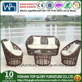 Плетеной мебелью диван, PE плетеной диван (TG-013)