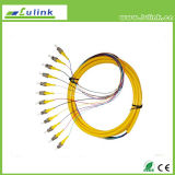 Factory Supplier St mm of 12 core fiber Optic Pigtail
