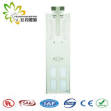 공장 가격!! 1개의 태양 LED 가로등에서 통합되는 B 작풍 60W/IP65 모두!! 인체 적외선 감응작용!! 옥외 정원 또는 벽 또는 안마당 또는 통로 또는 공도 램프
