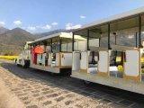 Het voertuig van het Sightseeing van de Trein van de Toerist van Filippijnen Ongebaande