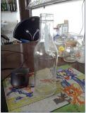 De Fles van het Glas van de wijn, de Fles van het Bier, de Fles van de Wodka, de Fles van de Wisky