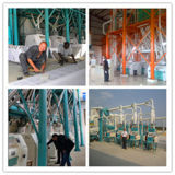 60-80 지부티에 있는 톤 Wheat Flour Milling Machine Installed