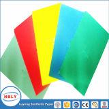 Moulage en plastique coloré de notice explicative étiquetant le papier synthétique