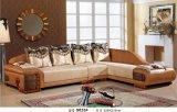 Gewebe-ledernes Sofa (FGH-19)