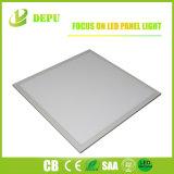 Qualità Premium del blocco per grafici LED di comitato dell'indicatore luminoso 40W 1200X300 dell'indicatore luminoso piano bianco di giorno naturale - 3 anni di garanzia