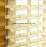 Roller Zebra Blinds Fabrics (SGD-R-3113)