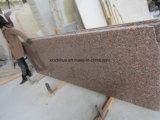Mattonelle/lastra/controsoffitto rossi del granito dell'acero naturale della Cina