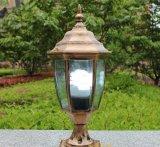 Angeschaltenes Solargarten-Solarlicht mit Licht des Bewegungs-Fühler-LED