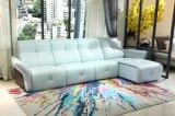 現代家具の居間の革ソファーセット